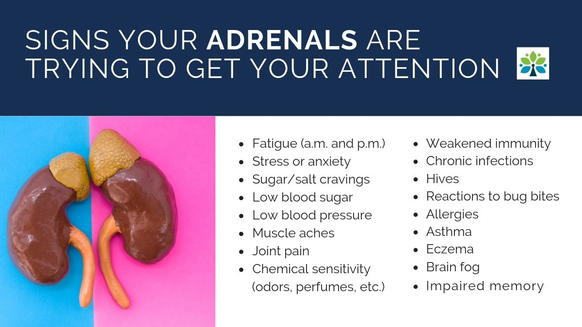 Symptoms of Adrenal Fatigue and HPA axis dysfunction