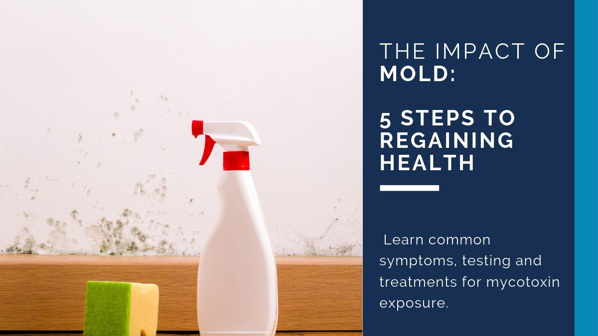 The Impact of Mold: 5 Steps to Regaining Health