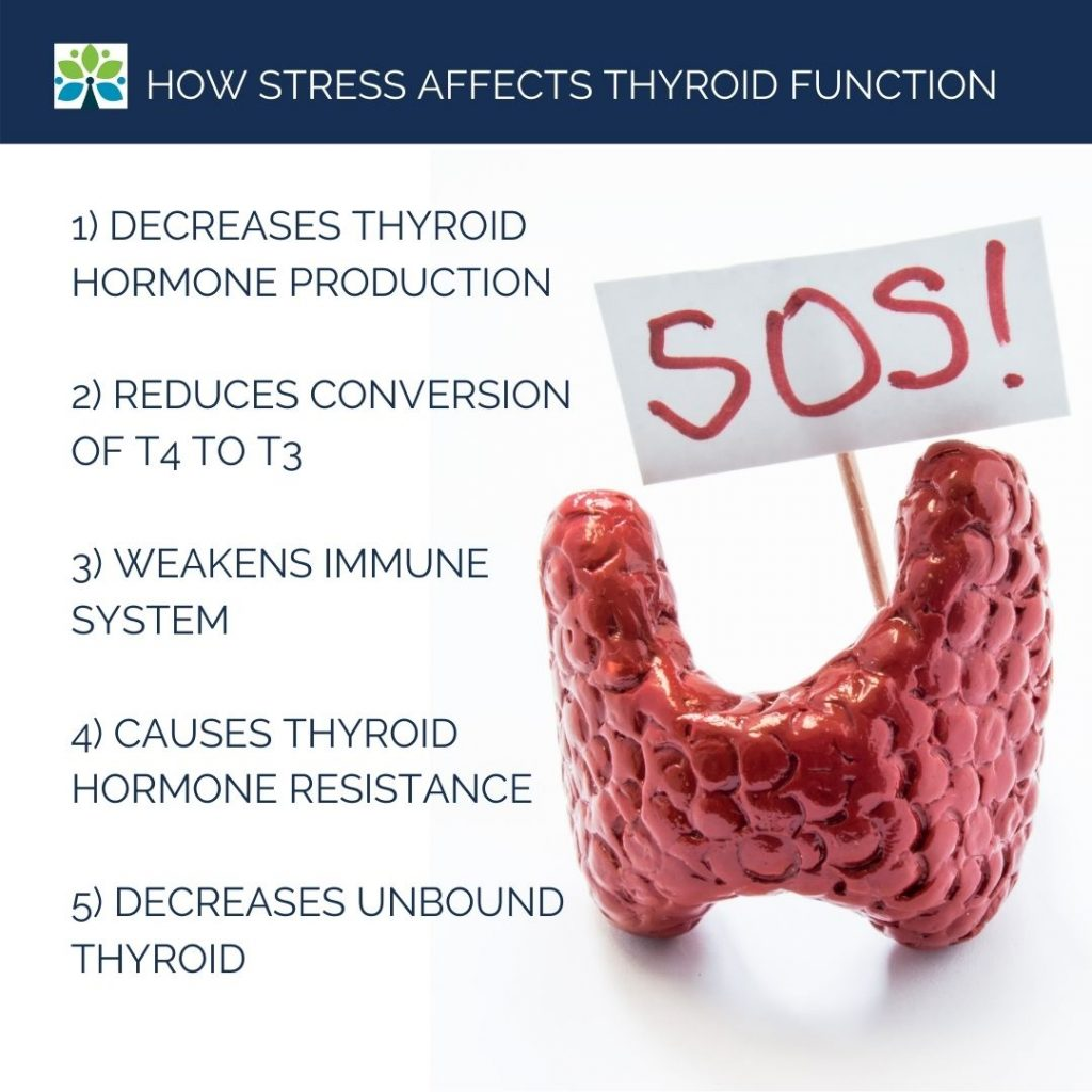 Thyroid gland sculpture holding an SOS sign. Text recaps the above list of ways stress disrupts thyroid hormone.